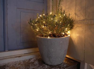 Lyskæde/julebelysning